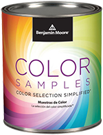 Benjamin Moore Color Sample